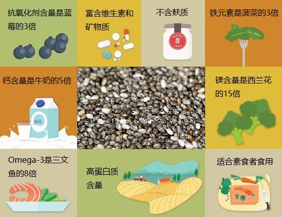 奇亚籽含丰富的营养成分