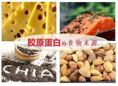 胶原蛋白的食物来源