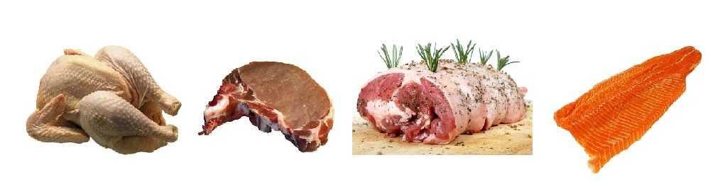 生酮饮食蛋白质食物