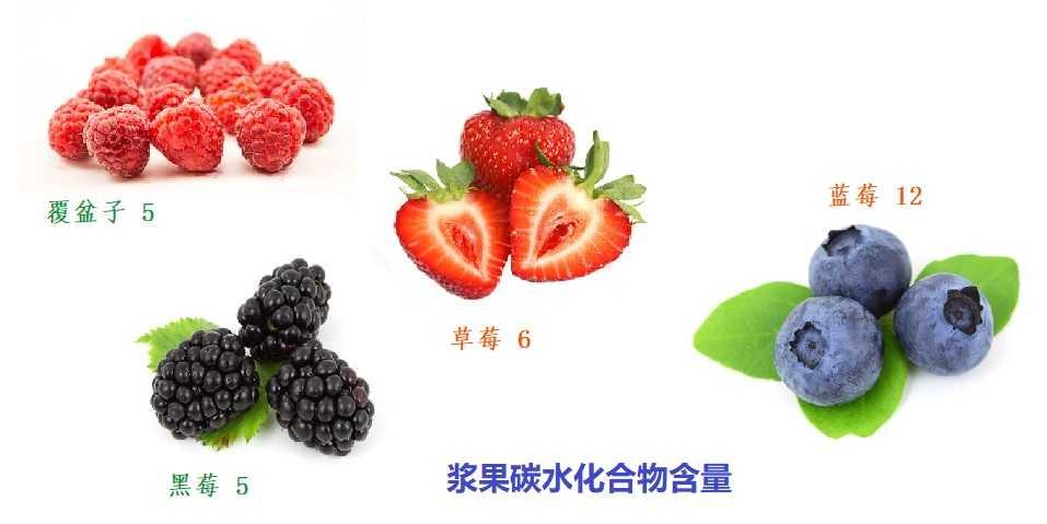 浆果含多少碳水化合物