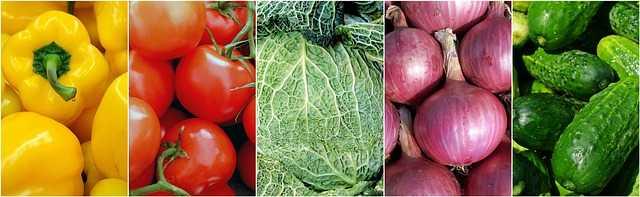 适合低碳水饮食的蔬菜