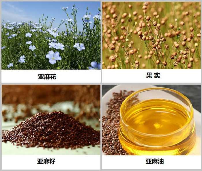 亚麻籽的功效、副作用、怎么吃?
