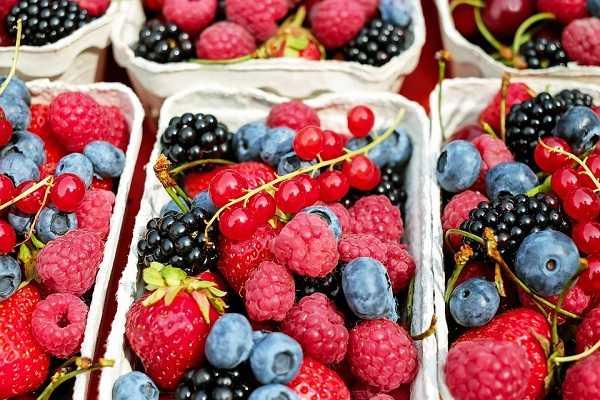 减肥最好和最差的水果