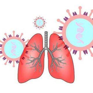 保护【肺部健康】的5种方法,对肺最好的抗氧化食物